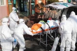 अर्काे अत्याचार : 'आरडीटी' नेगेटिभ आएपछि २ जनाको मृत्यु, पीसीआरमा 'पोजेटिभ'